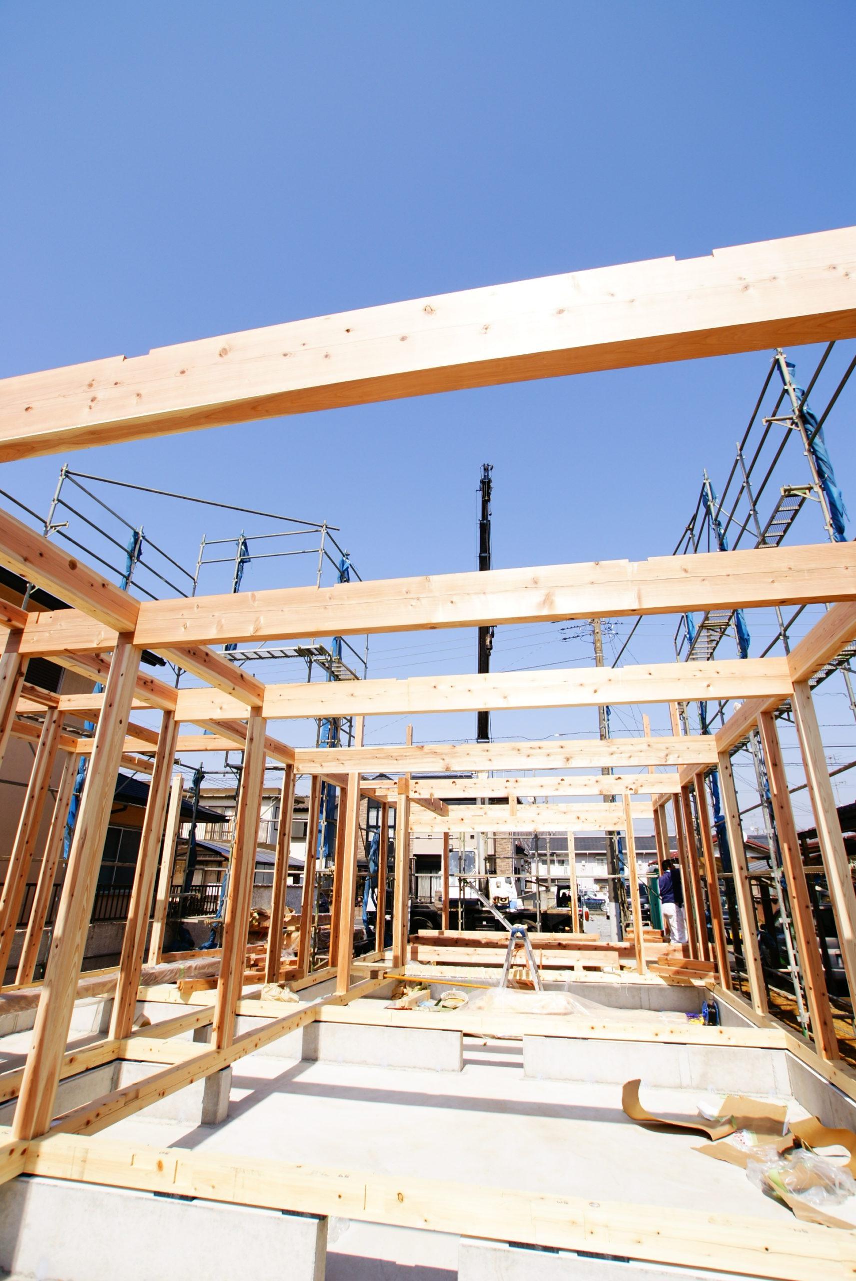 建前が始まりました。